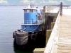 blue-tug-boat-in-eastport