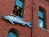 eastport-sardine-2