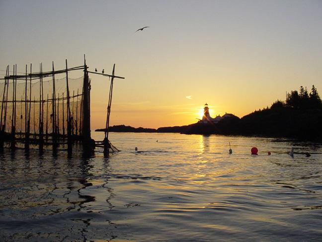 A Fishing Weir Near Head Harbour Light Station at Dawn