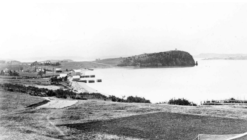 1882-view-of-friar-bay